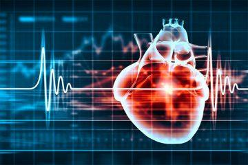 5 mitos sobre la enfermedad cardiovascular